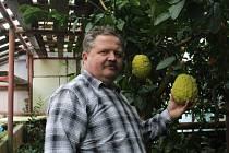 Jan Šanda, pěstitel citrusů