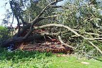 Při čtvrteční bouřce padl na altán u rybníka strom