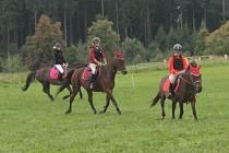 Parkurové závody koní a psů na Rudě