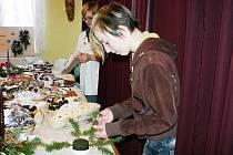 Vánoční výstava v Kněževsi 2010