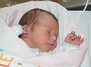 ALŽBĚTA HVOZDECKÁ, KARLOVY VARY. Narodila se 26. září 2017. Po porodu vážila 3,54 kg a měřila 51 cm. Rodiče jsou Kateřina a Martin, bratr Albert.