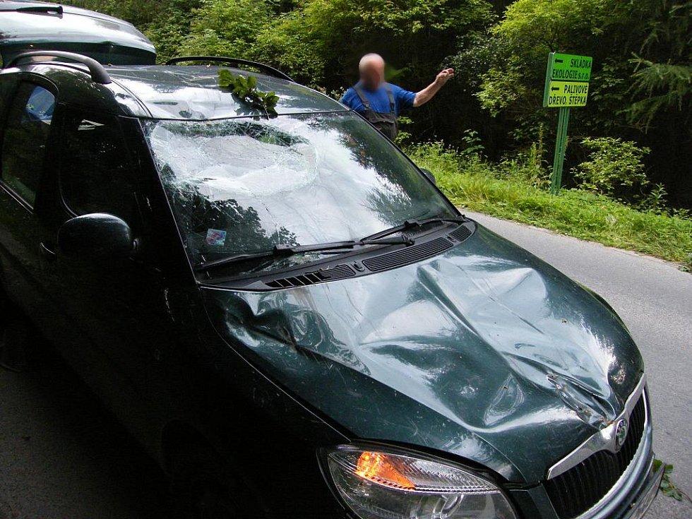 Mohutná větev spadla na automobil. Jako zázrakem se naštěstí nikomu nic nestalo