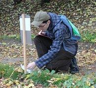 Soutěž paměť stromů na botanické zahradě v Rakovníku