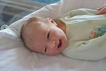 SÁRA TOMANOVÁ, NOVÉ STRAŠECÍ . Narodila se 12. července 2019. Po porodu vážila 3,2 kg a měřila 48 cm. Rodiče jsou Dana a Pavel.