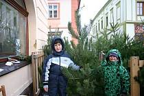 Prodej vánočních stromků na Husově náměstí