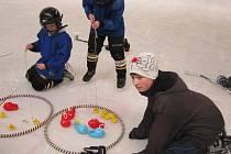 Karneval na ledě v Rakovníku