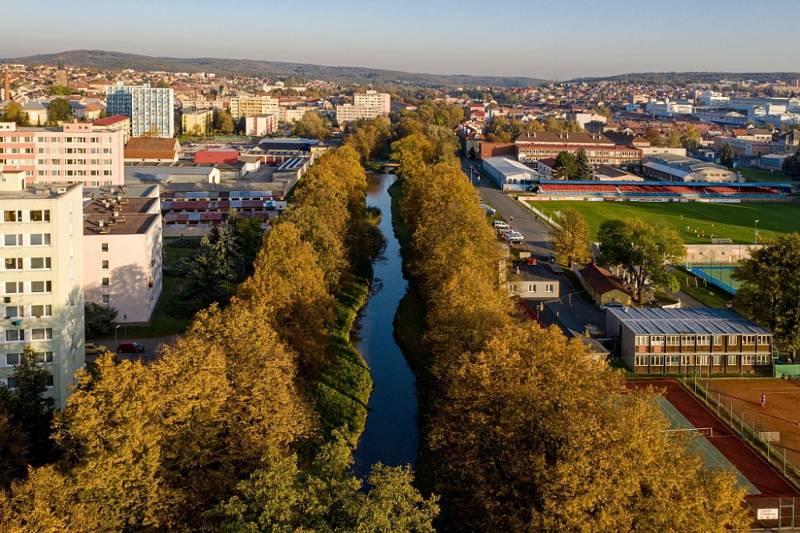 Lipová alej u Rakovnického potoka zvítězila v anketě Alej roku 2019 v konkurenci dalších 95 alejí.