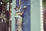 WALL CLIMBING a pittbull Mateo, který skáče 3,10 m.