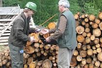 Ukázka těžby a evidence dřeva Lesy ČR