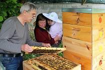Do otevřeného úlu se včelami mohli zájemci o život včel v neděli od 10. do 12. hodiny nahlédnout u včelaře Zdeňka Choce v Novém Strašecí.