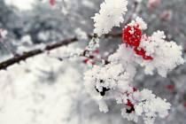 Zima. Ilustrační foto