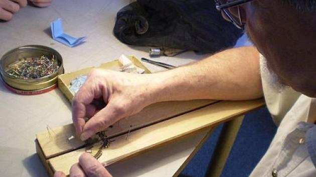 Seminář preparace motýlů
