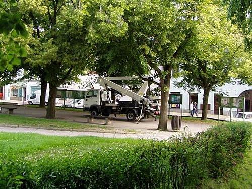 Bezpečnostní řez lip na Komenského Náměstí
