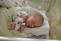 ROZÁLIE ŠPIČKOVÁ, RAKOVNÍK. Narodila se 27. března 2019. Po porodu vážila 2,8 kg a měřila 49 cm. Rodiče jsou Denisa a Adam.