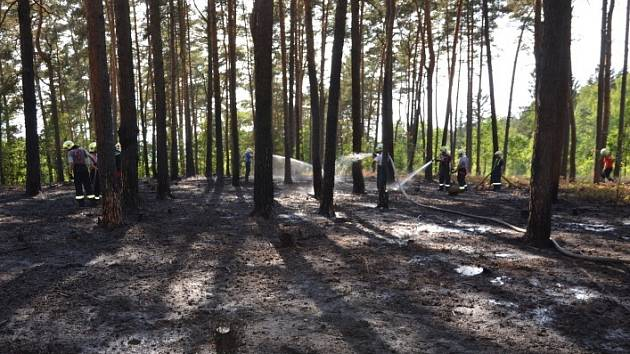 Požár lesa na Rakovnicku.