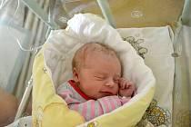 PETRA ŠPIDROVÁ, ČISTÁ. Narodila se 17. ledna 2019. Po porodu vážila 3,3 kg a měřila 50 cm. Rodiče jsou Petra a Vilém. Sestra Kačka a Lucka.