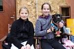 Evropský psí šampionát se konal v rakovnickém Domě osvěty.