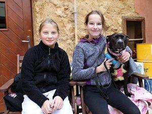 Evropský psí šampionát se konal v rakovnickém Domě osvěty