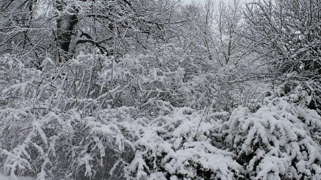 Sněhová nadílka na Josefa v Rakovníku