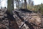Požár v lese u Lužné