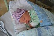 TOMÁŠ LIEBEZEIT, NOVÉ STRAŠECÍ. Narodil se 9. ledna 2019. Po porodu vážil 2,7 kg a měřil 48 cm. Rodiče jsou Jitka a Václav. Bratr Lukáš.