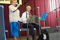 Pavlíkovská harmonika