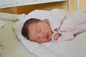 ANNA NOVOTNÁ, NOVÉ STRAŠECÍ. Narodila se 10.dubna 2019. Po porodu vážila 3,3 kg a měřila 50 cm. Maminka Martina. Bratr Kryštof.