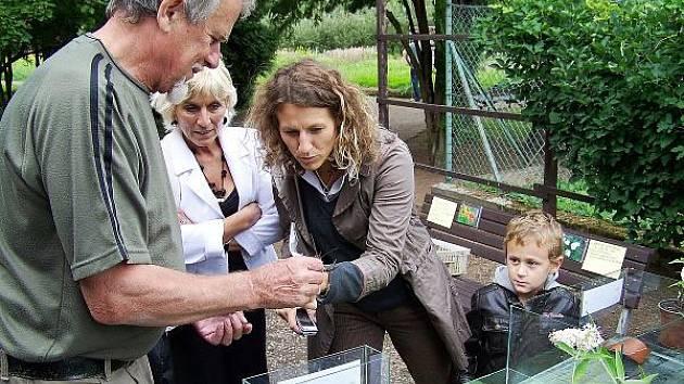 Pravěk v botanické zahradě