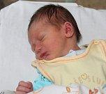 VENDELÍN VITNER, SVOJETÍN Narodil se 13. listopadu 2017. Po porodu vážil 2,93 kg a měřil 48 cm. Rodiče jsou Tereza a Jan. Sestra Anna.