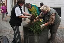 Výsadba mobilních nádob v Rakovníku v Nádražní ulici