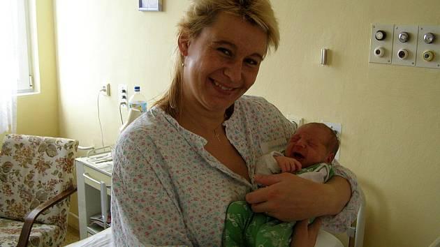 Dominika Vinšová se narodila 7. 11. 2007 v 9:00. Dominika po narození vážila rovné 3 kilogramy a měřila 47 centimetrů.