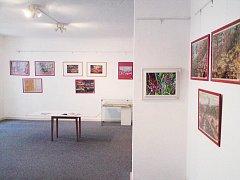 Výstava v jesenickém muzeu.