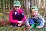 Úlovek z Divišova: Největší radost mají děti, když najdou houby a nejmladší syn (2,5 roku) už také sbírá
