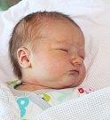 ANNA PODHORSKÁ, SENOMATY Narodila se 13. října 2017. Po porodu vážila 4,00 kg a  měřila 53 cm. Rodiče jsou Lenka a Miroslav.   Bratr Jan.