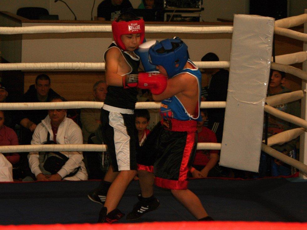 Oblastní liga v boxu, Dům Osvěty, 2016