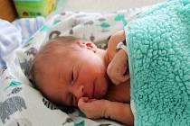 ALEKS GRUSSMANN, PRAHA. Narodil se 22. května 2019. Po porodu vážil 3,2 kg. Rodiče jsou Petra a Lukáš.