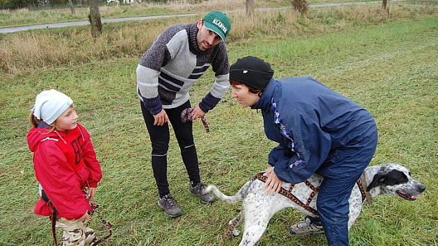 Závody psích spřeženích v Novém Domě