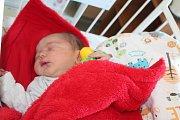 JAROSLAV VÍDEŇSKÝ, PRAHA. Narodil se 8. října 2017. Po porodu vážil 4,18 kg. Rodiče jsou Lucie a Jaroslav.