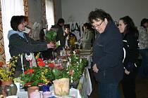 Jarní výstava ve Všetatech