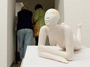 Svoji vernisáž už si výstava odbyla. Návštěvníci se na ni mohou podívat ale až do 3. září.