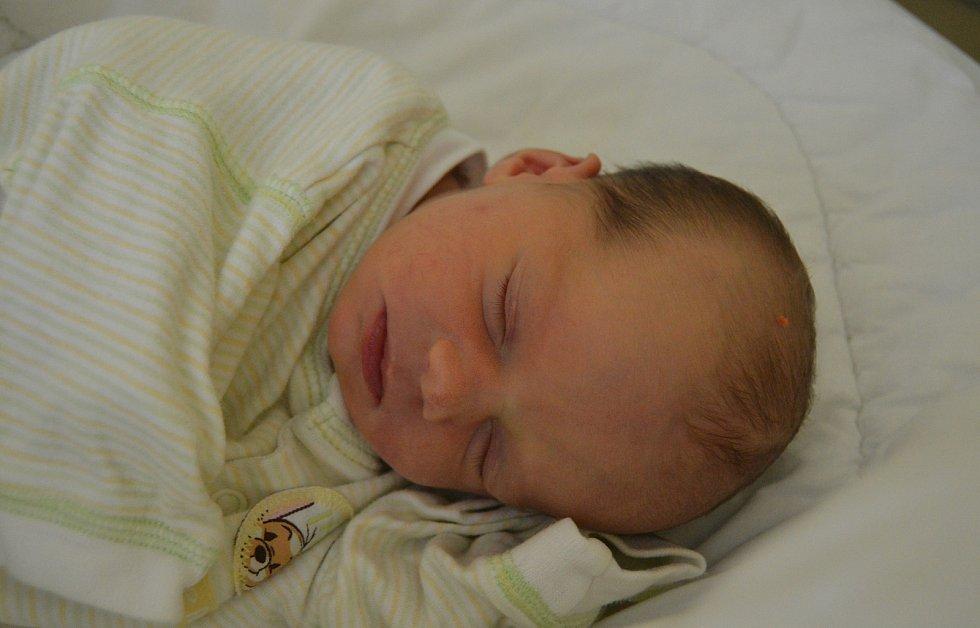 ANNA KONOPÁSKOVÁ, PAVLÍKOV. Narodila se 15. listopadu 2019. Po porodu vážila 2,5 kg a měřila 47 cm. Rodiče jsou Pavla a Marek. Sestra Magdalena.