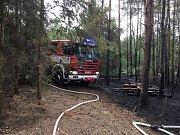 Požár lesa u obce Senec.