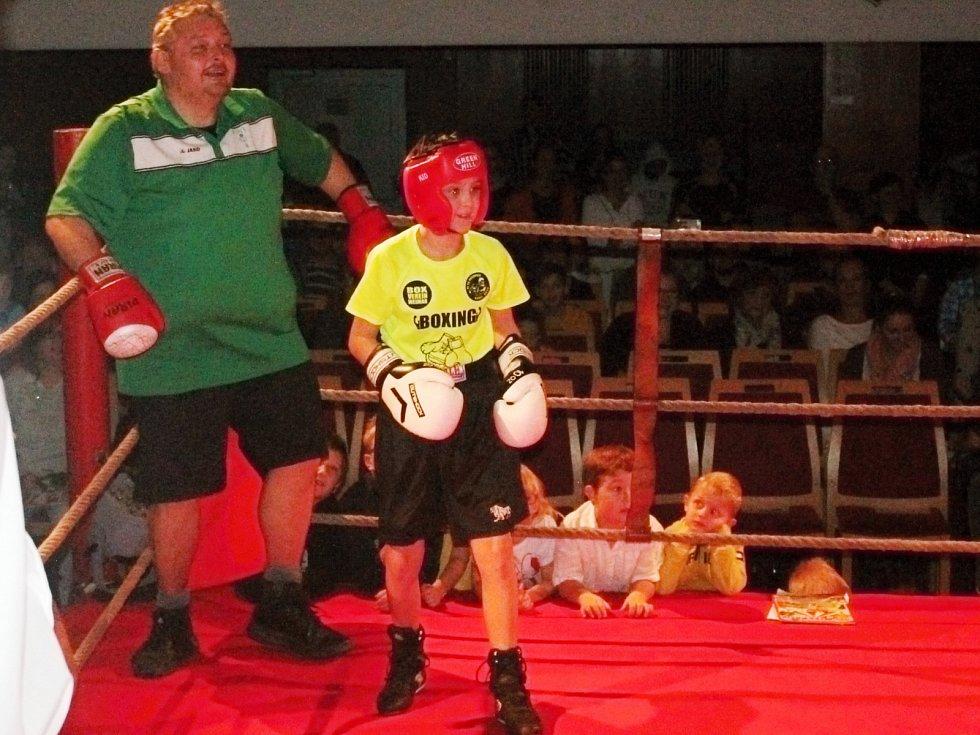Devátý ročník galavečeru Boxeři dětem.