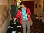 Volby do Poslanecké sněmovny v Rabasově galerii v Rakovníku.