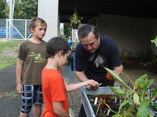 Výstava nasožravých rostlin na botanické zahradě