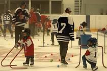 Týden hokeje na rakovnickém zimním stadionu přilákal 22 začínajících bruslařů včetně tří holčiček.