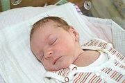 LEONA PONGRÁCOVÁ, NOVÉ STRAŠECÍ. Narodila se 30. dubna 2018. Po porodu vážila 2,9 kg a měřila 48 cm. Rodiče jsou Monika a Martin. Sestra Adélka.