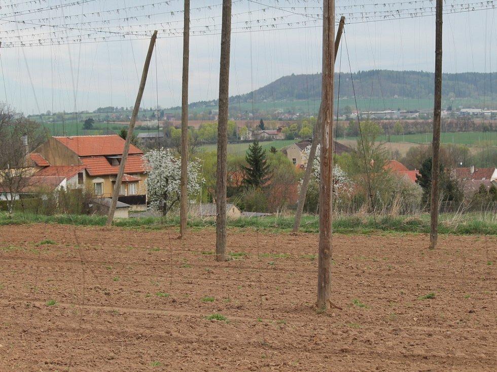 Jarní práce ve chmelu v Kounově