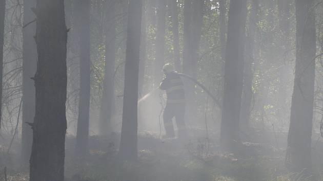 Požár lesní hrabanky mezi Senomaty a Hostokryjemi