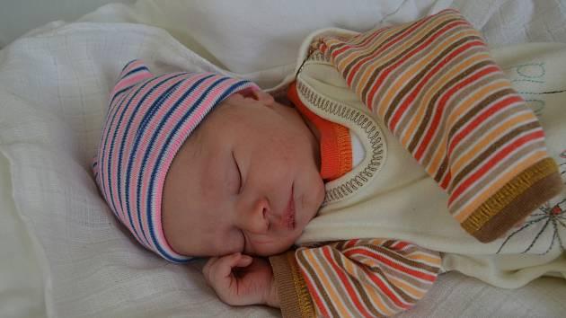 ELIZABET TODERIŠKOVÁ, CHRÁŠŤANY. Narodila se 16. října 2019. Po porodu vážila 2,6 kg a měřila 48 cm. Rodiče jsou Zlata a Marcel.